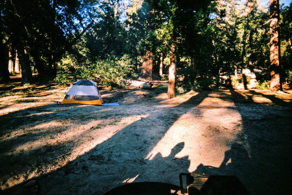 Idyllwild Camping, Fern Basin Campground — Wandering Always