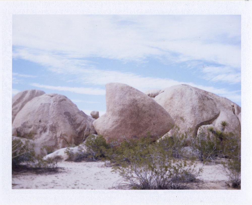 Instant - Polaroid 420 Land Camera- Fuji FP-100C Peel Apart