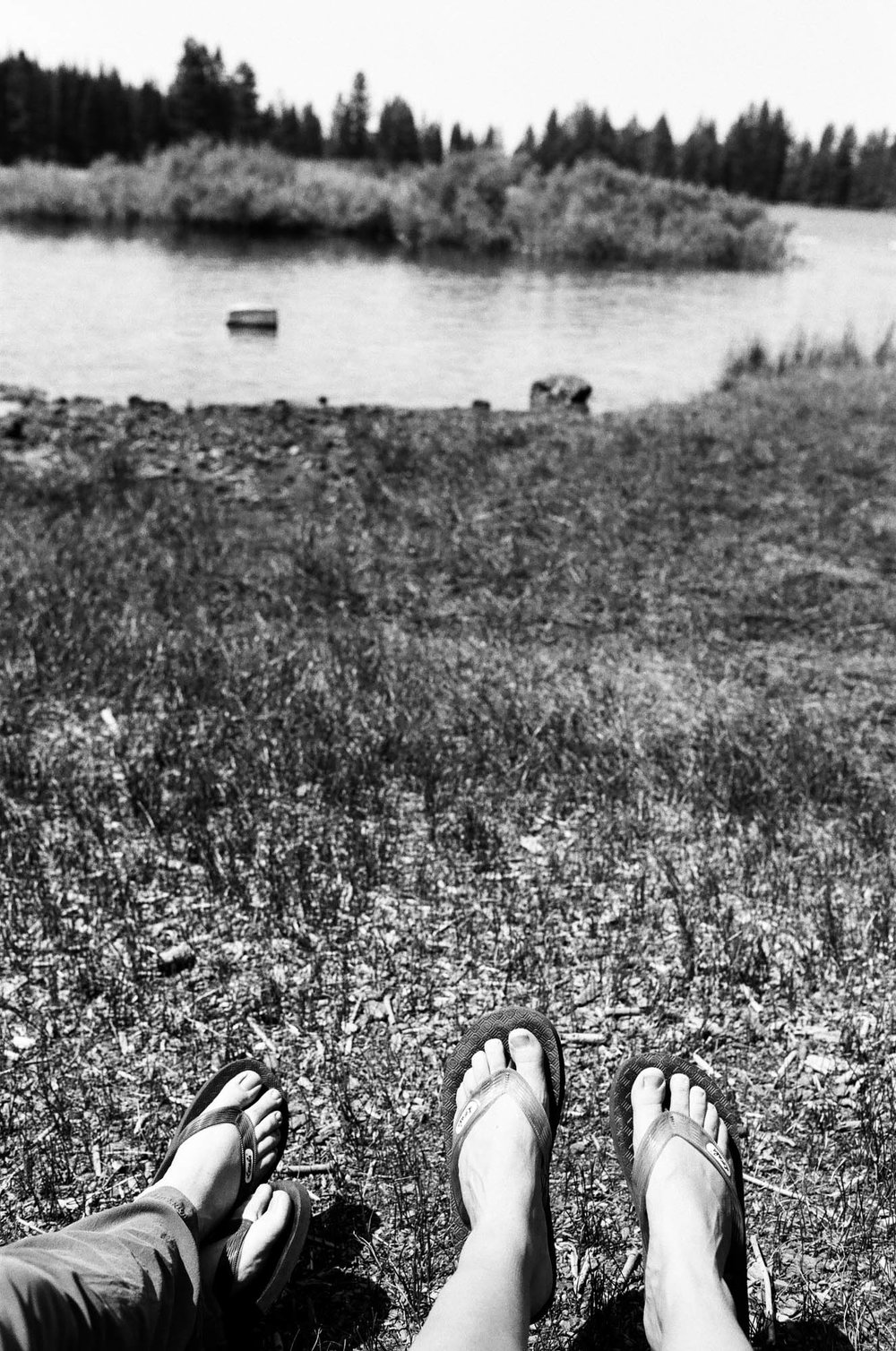 Manzanita Camp 04.jpg