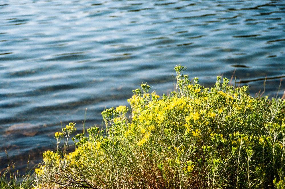 Manzanita Lake 12.jpg