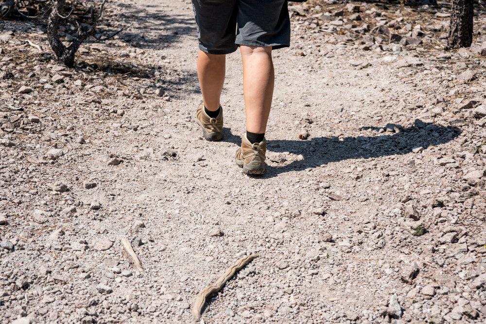 Lily Pond Trail 09.jpg