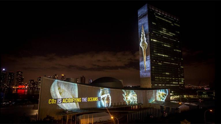 UNITED NATIONS ILLUMINATIONS - SEPT 2014