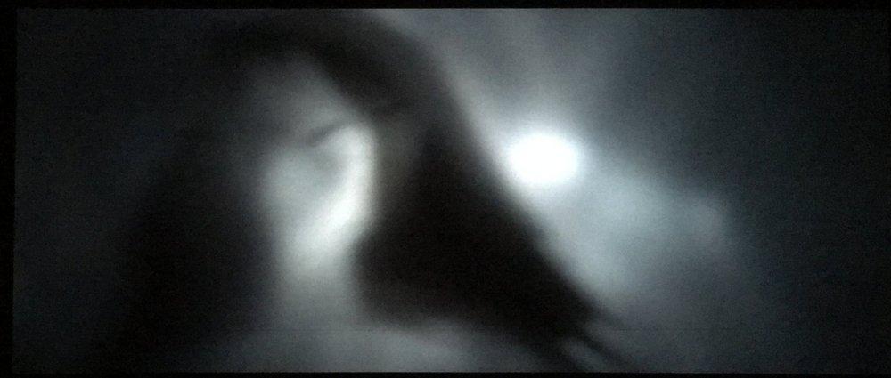 Image-7.jpeg