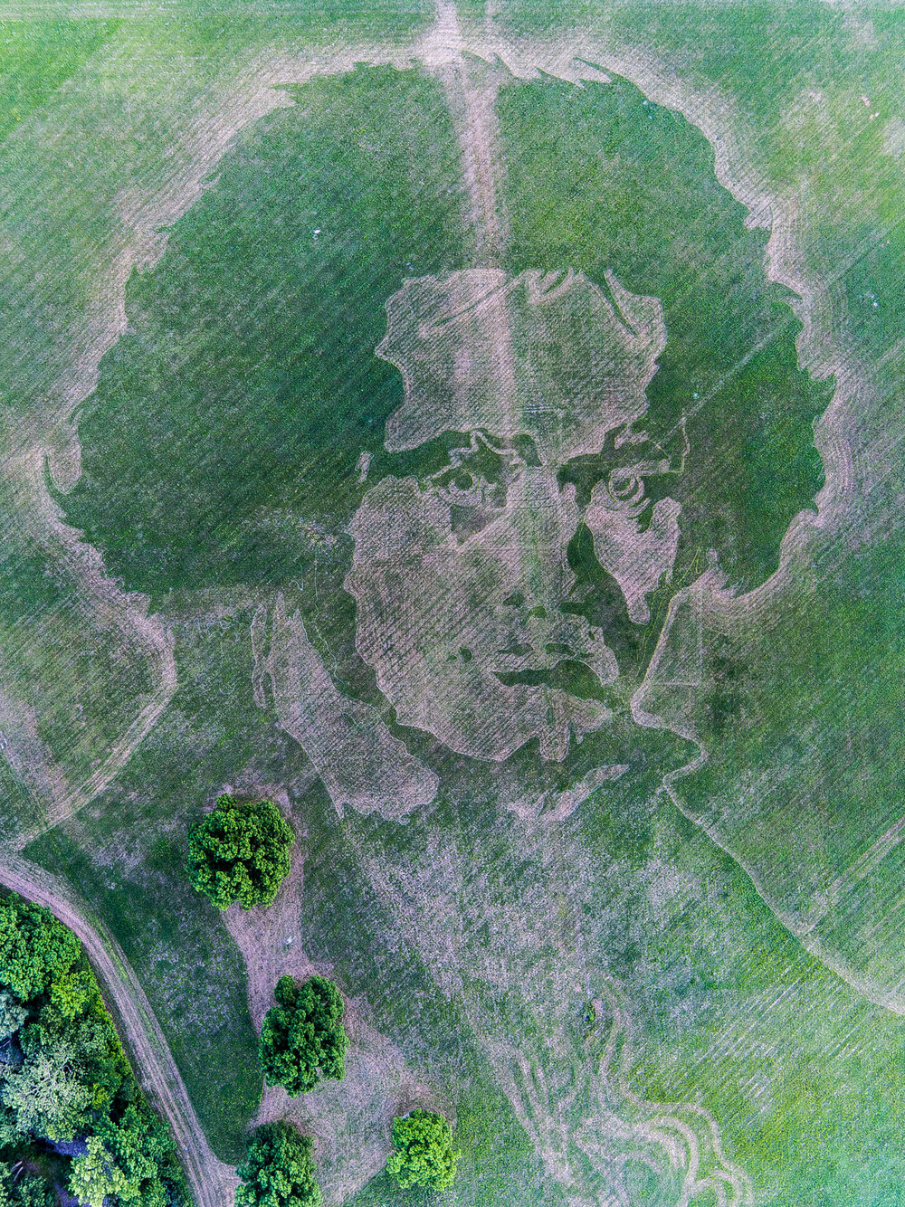 Chase-Guttman-Drone-Portfolio-1.jpg