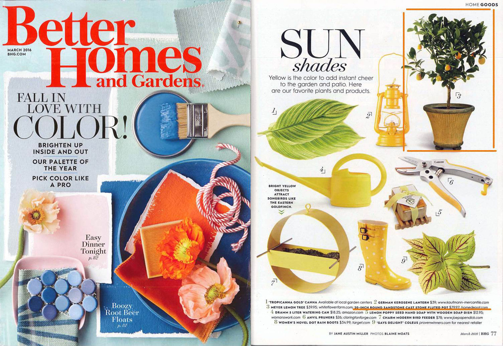 Better Homes and Gardens March 2016