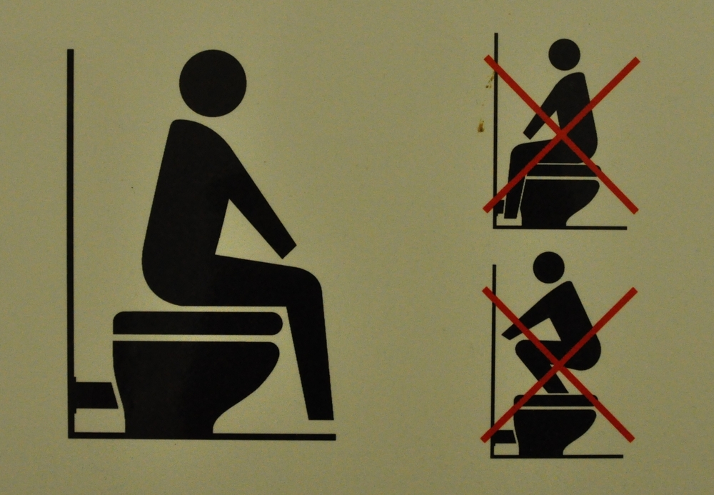 How to use (and not use) a Western seat toilet