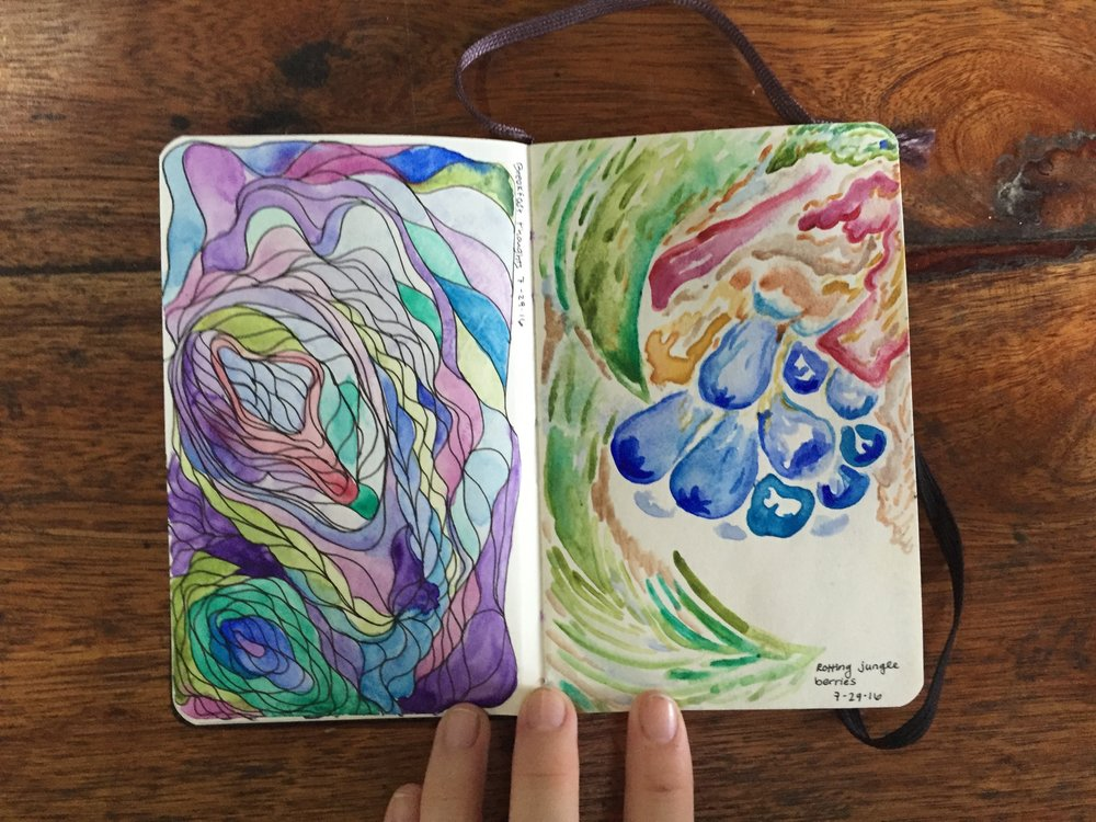 "Left: ""Breakfast thoughts""  Micron pens and watercolor Right: ""Rotting jungle berries"" Watercolor You can see I'm already enraptured by the plant life of Peru - a theme that will continue through the rest of the pages of the sketchbook July 29, 2016"
