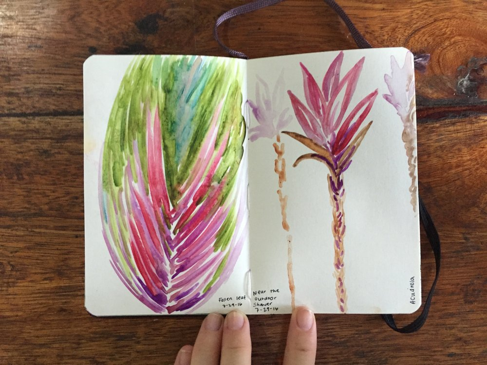 "Left: ""Fallen leaf"" Watercolor Right: ""Near the outdoor shower"" Watercolor Continuing the plant theme July 29, 2016"