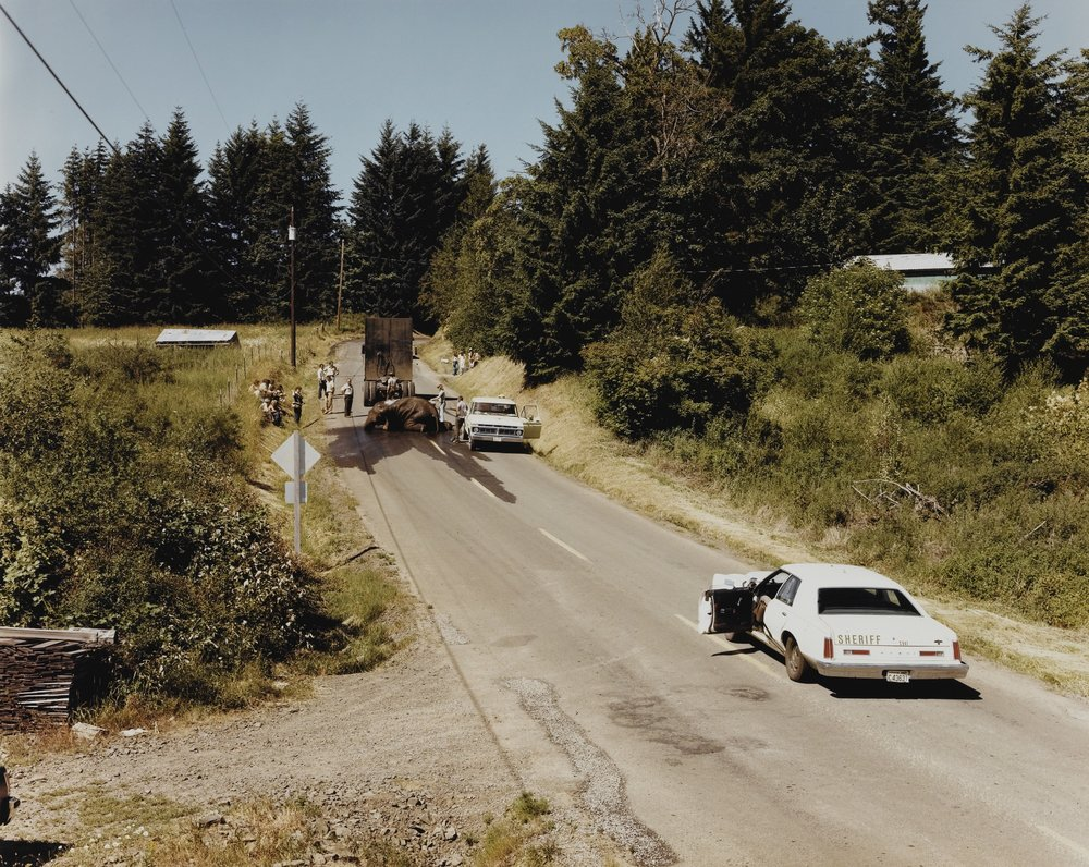 Exhausted renegade elephant, Woodland, Washington, June 1979 [printed 1980s] by Joel Sternfeld, Estimate EUR2,000 — 3,000