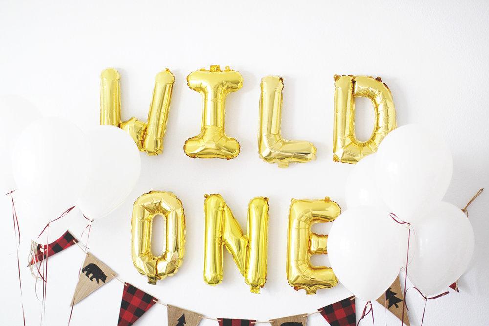 wild one 002.jpg