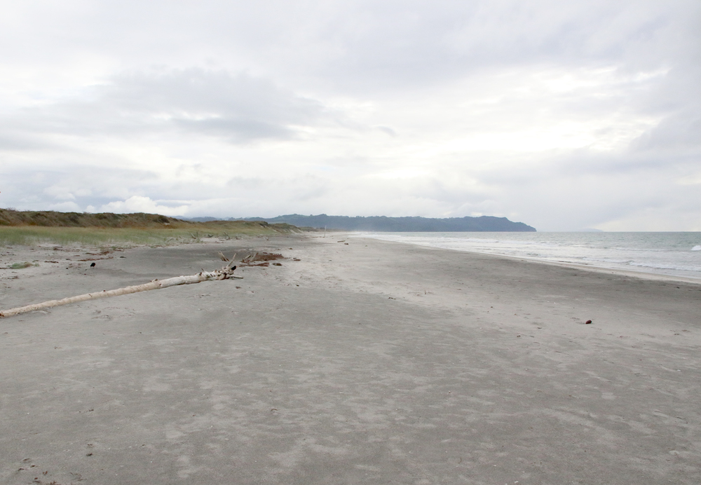 waihi beach landscape.JPG