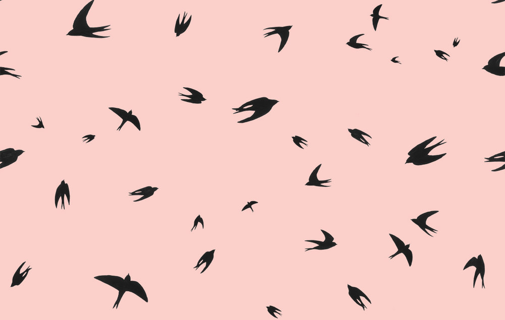 flying swallows scatter.jpg