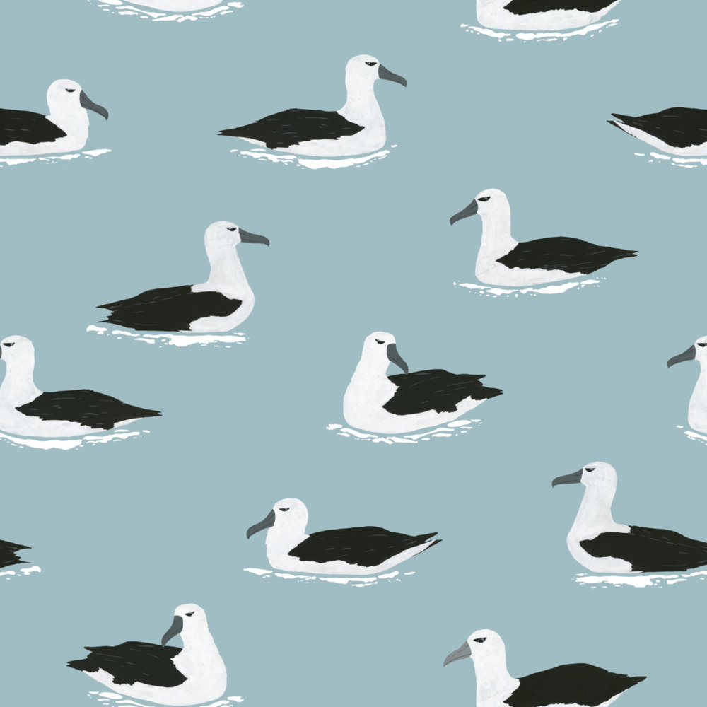albatross pattern