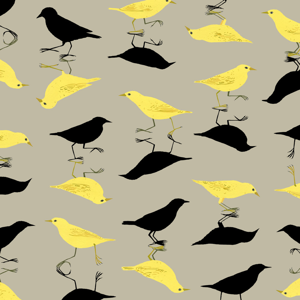 shadow birds pattern