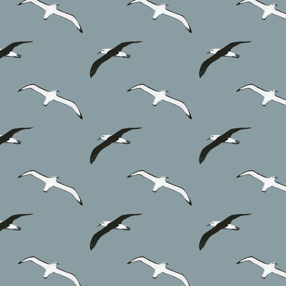 flying albatross pattern