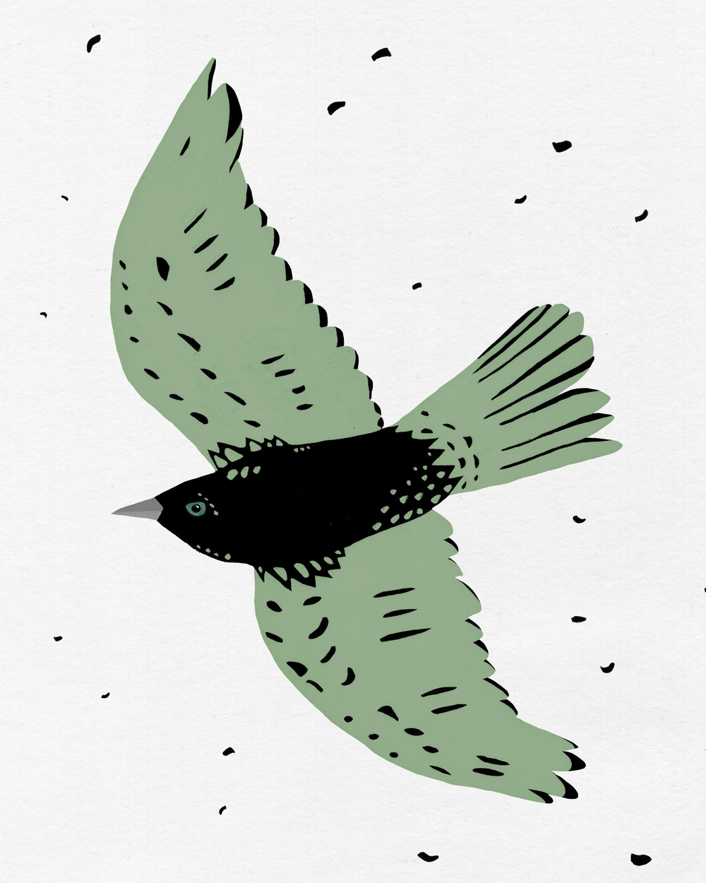 patterned bird series - free bird