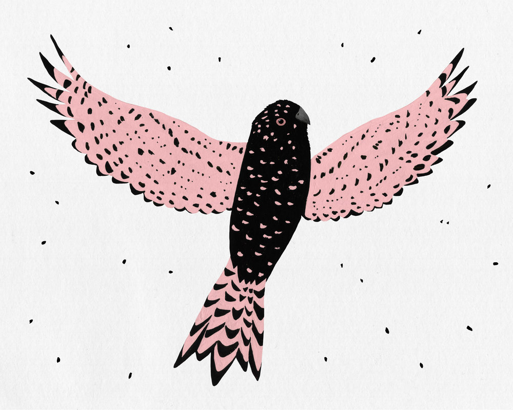 patterned bird series - pink parakeet