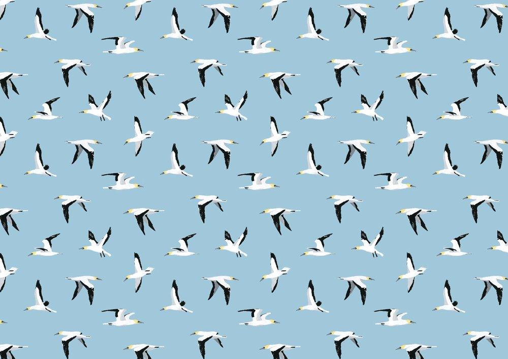 gannet-pattern-wrapping-paper.jpg