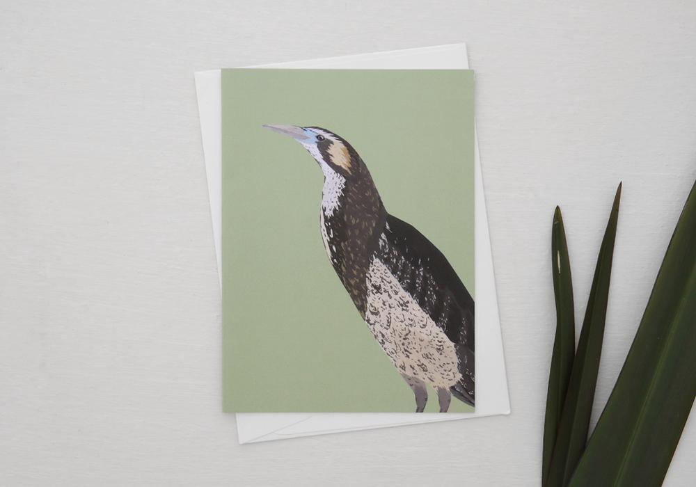 melissa-boardman-nz-bird-illustrated-greeting-card-bittern.png