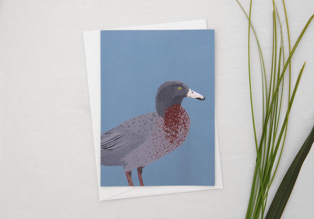 melissa-boardman-nz-bird-illustrated-greeting-card-black-whio.png