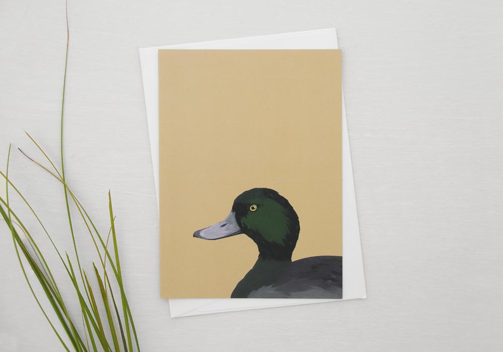 melissa-boardman-nz-bird-illustrated-greeting-card-black-teal.png