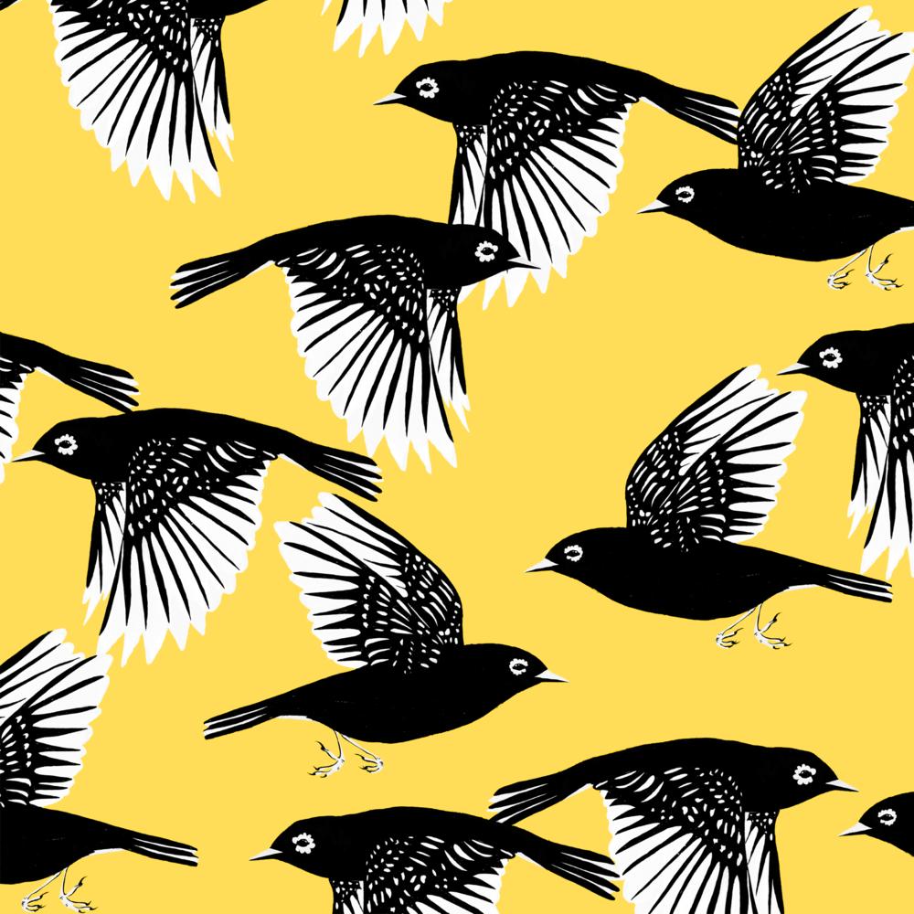 melissa boardman waxeyes pattern yellow graphic bird.png