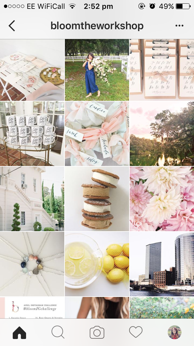 Why-Your-Instagram-Needs-A-Theme-bloomtheworkshop.PNG