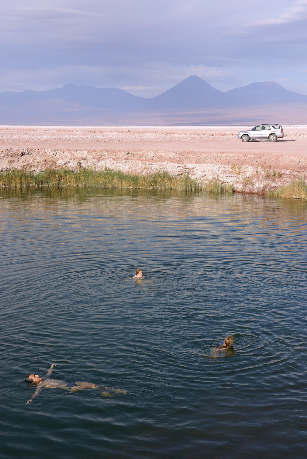 Suolajärvi, San Pedro de Atacama, Chile
