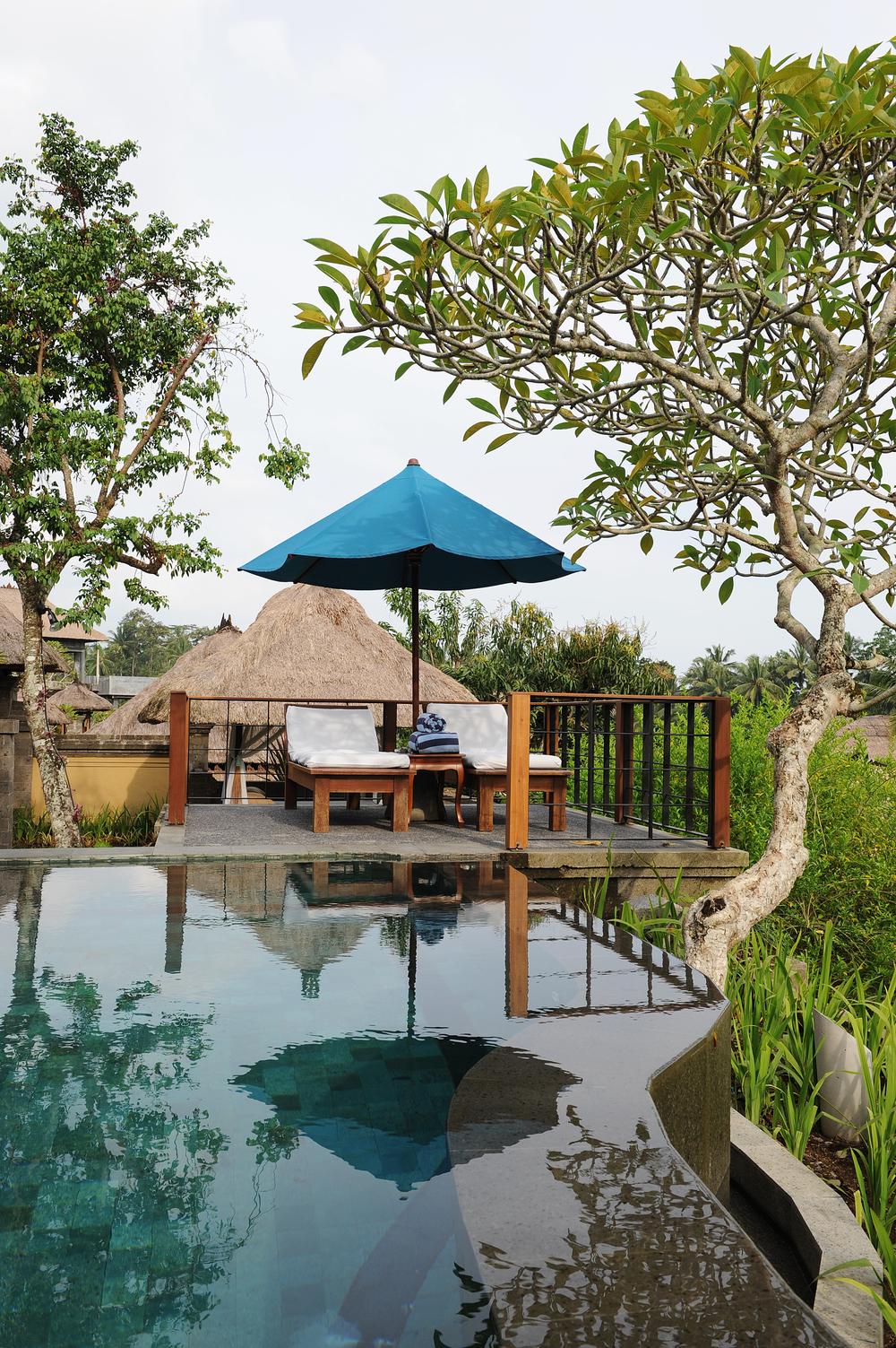 Bali, hotelli, luksus, uima-allas