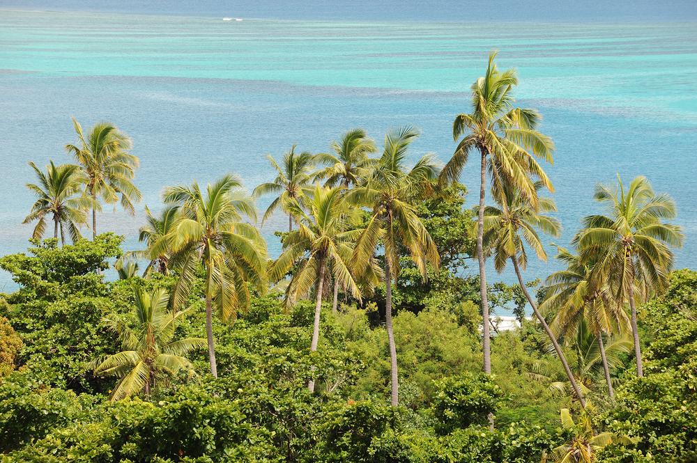 Fidzi, meri, turkoosi, matkablogi