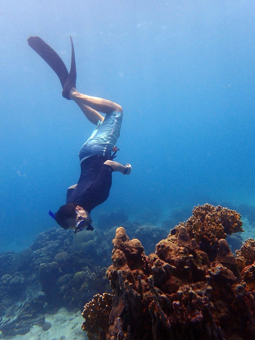 Snorkelointi, meri, Kolumbia, matkablogi, matka