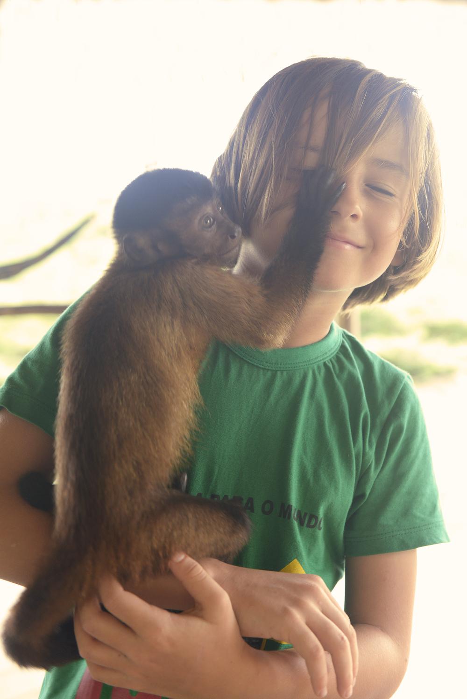 Matkablogi, apina, Amazon, perhematkailu, luontomatka, blogi