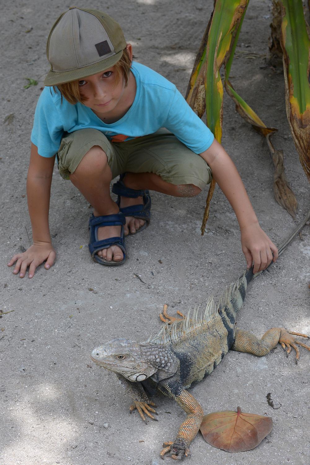 Iguana, Kolumbia, matkalla, matkablogi, matka, perhematka, Karibia, lomalla, blogi, lapset matkalle