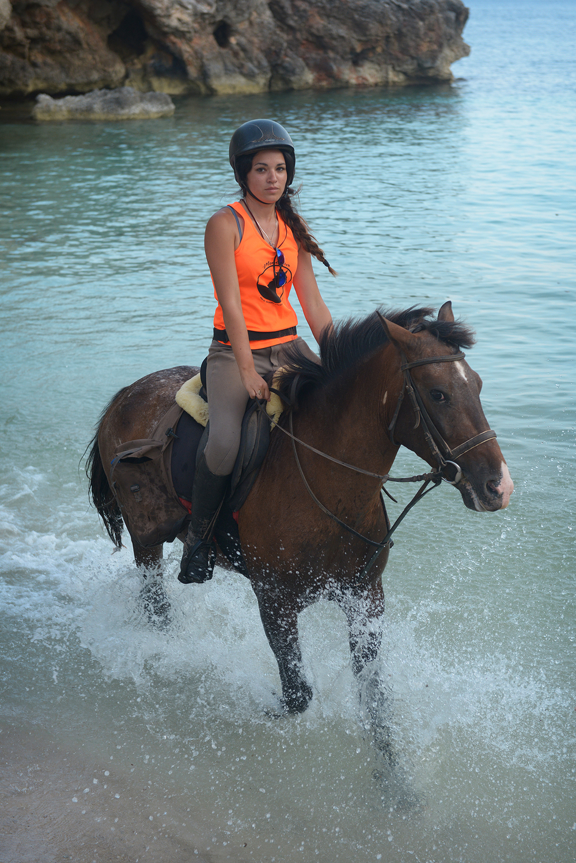 hevonen, Menorca, Välimeri, Espanja, matka, matkablogi