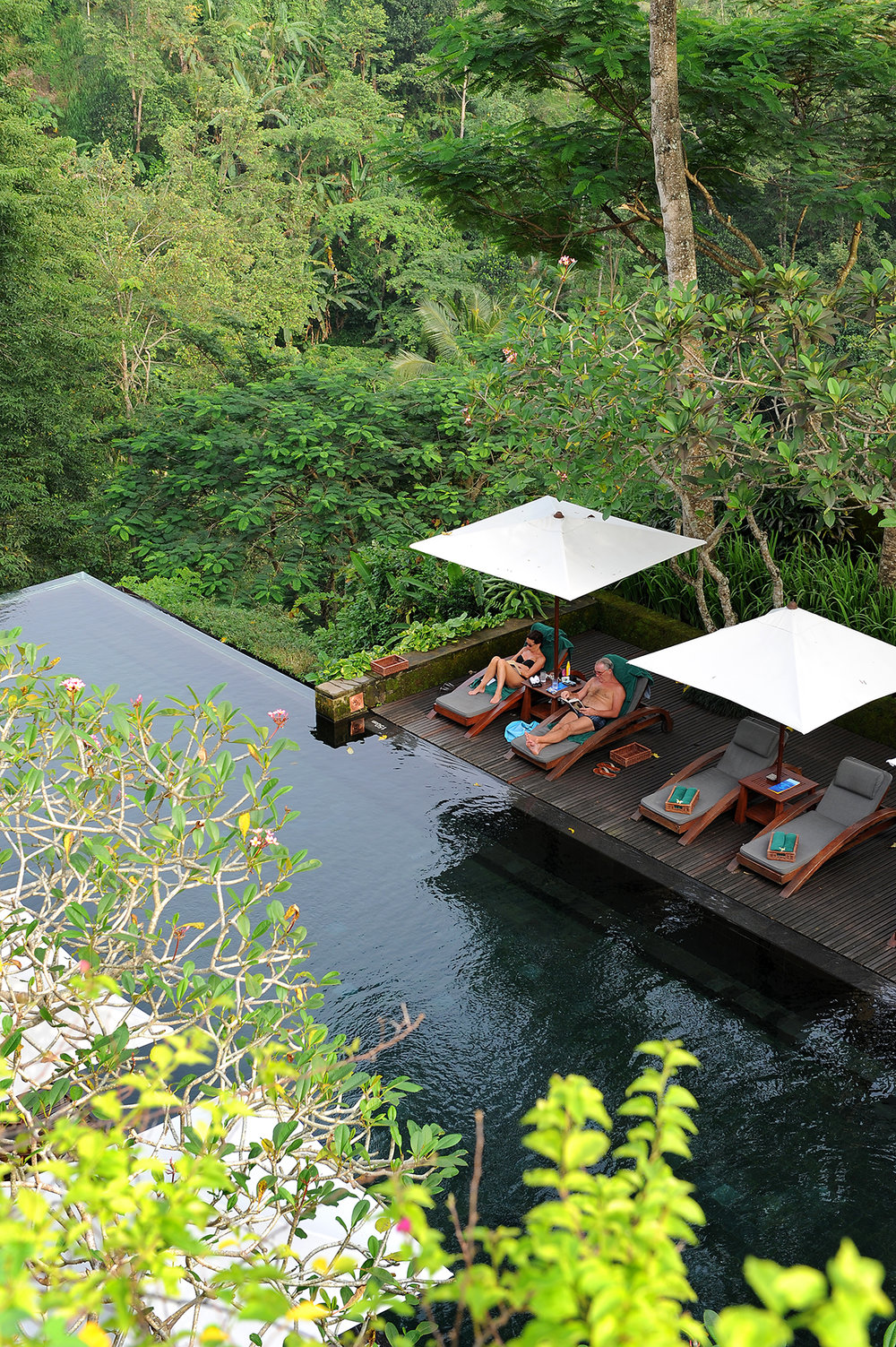 matka, matkablogi, matkailu, Bali, Ubud, hotelli, uima-allas, Maya Ubud, tropiikki