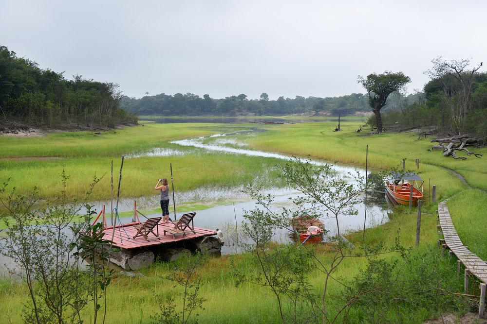 Amazon, matka, matkablogi, luontomatkailu, luonto, sademetsä