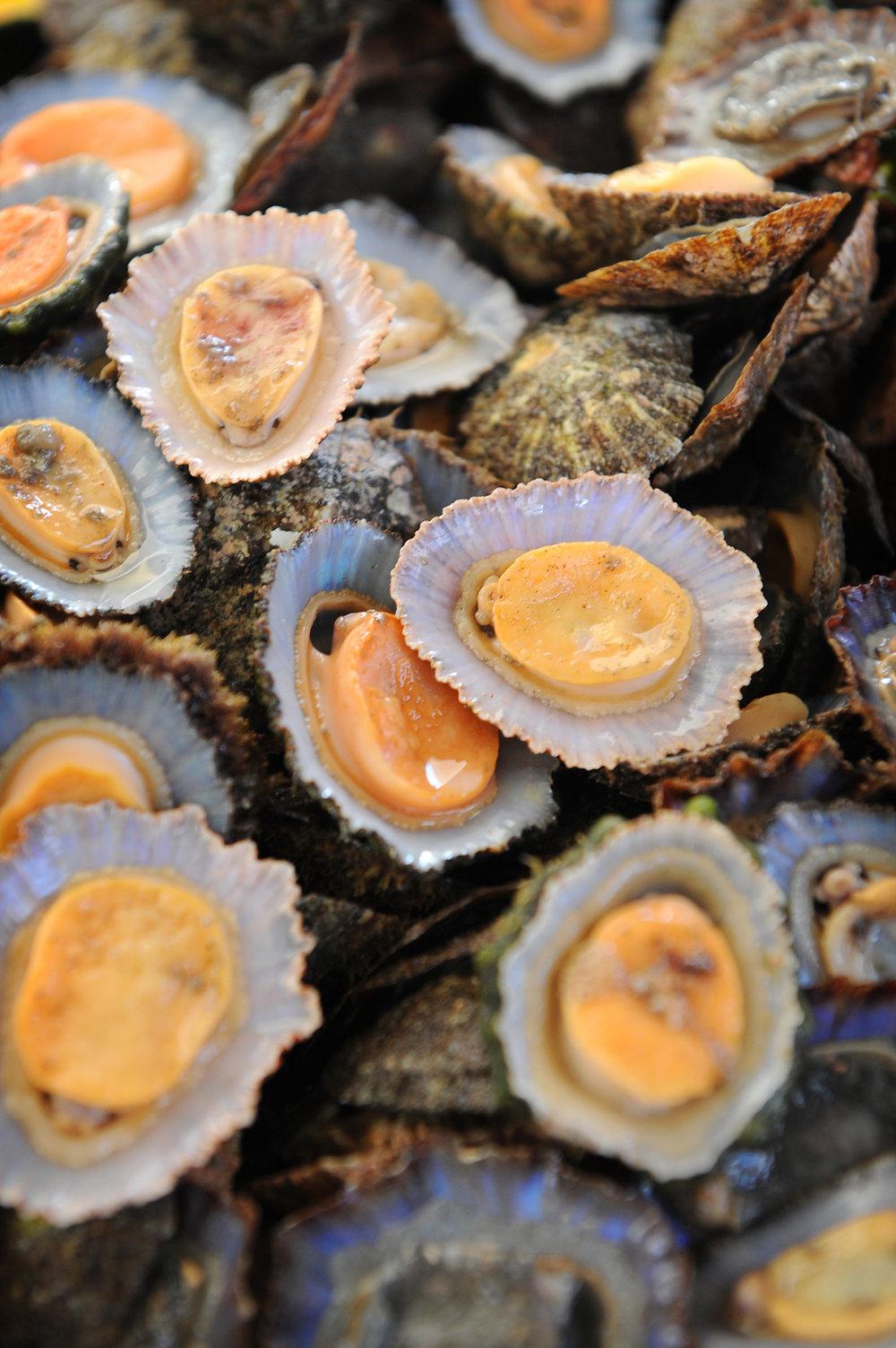 Madeira, merenelävä, ruoka, simpukka