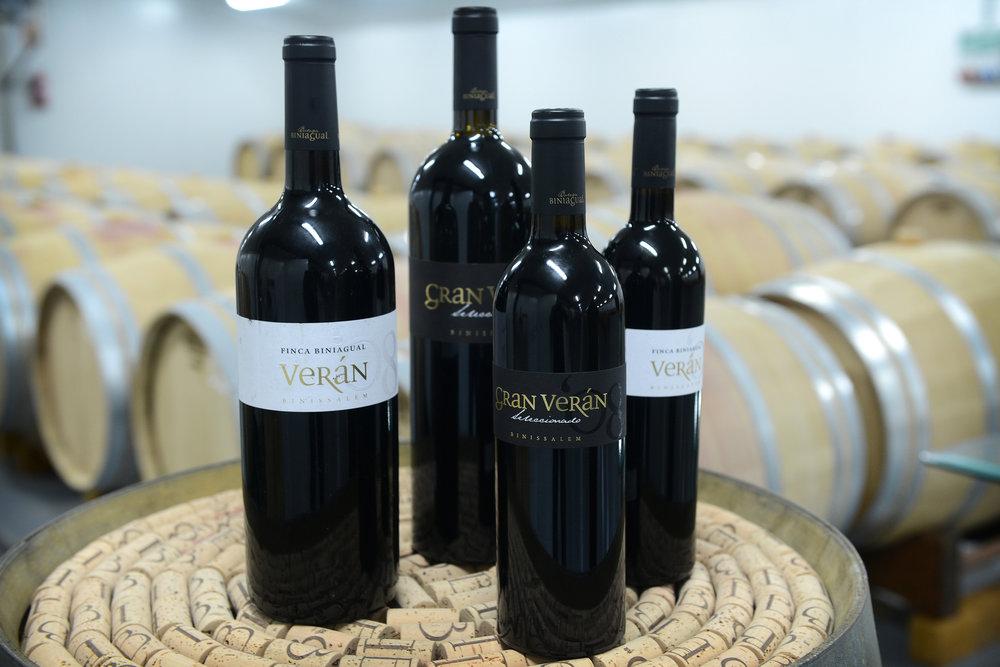 Mallorca, Espanja, Baleaarit, viini, viinitila, maaseutumatkailu