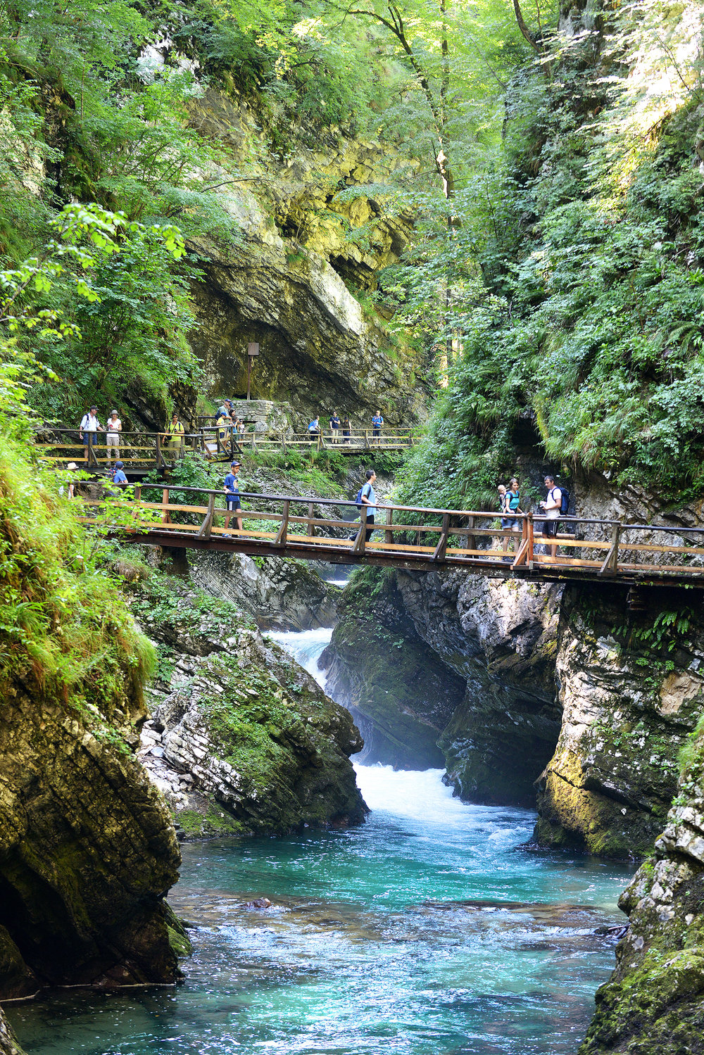 Slovenia, Bled, Vintgar Gorge