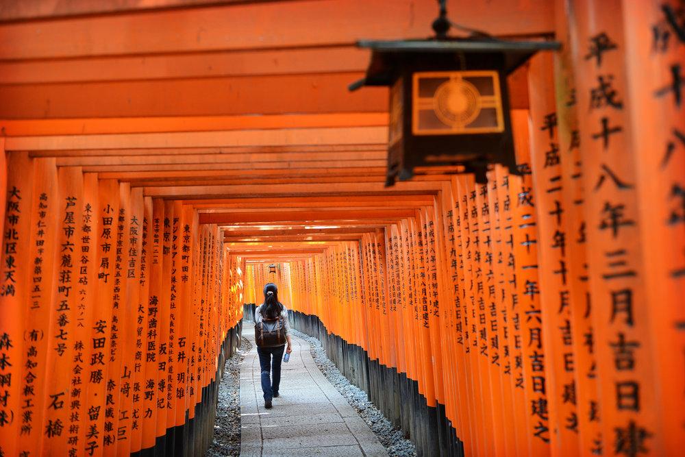 Kioto, Japani, Fushimi-Inari-Taisha