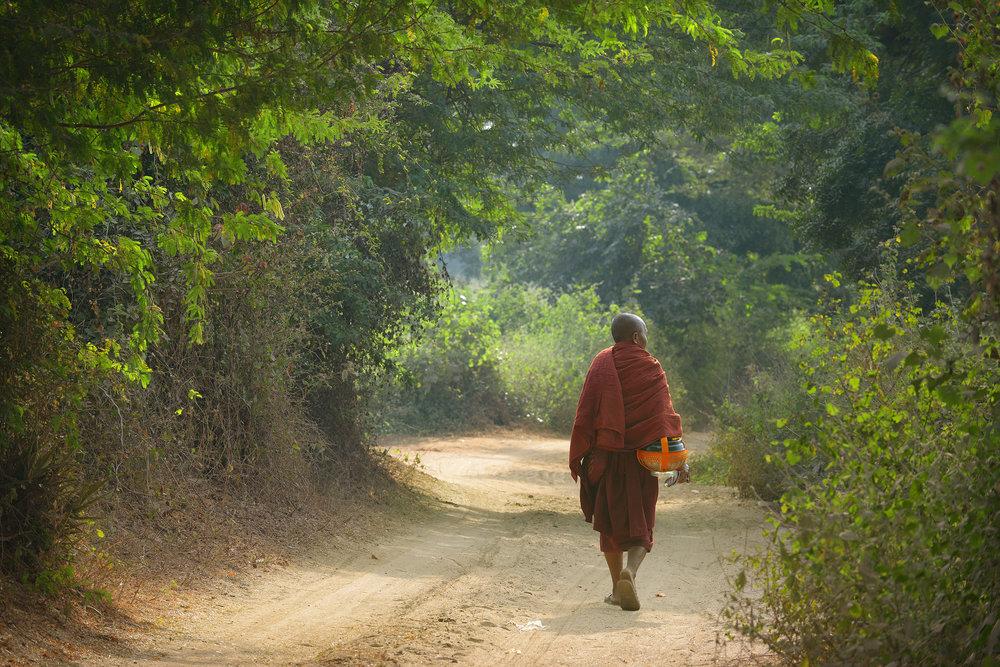 Bagan, Myanmar, munkki