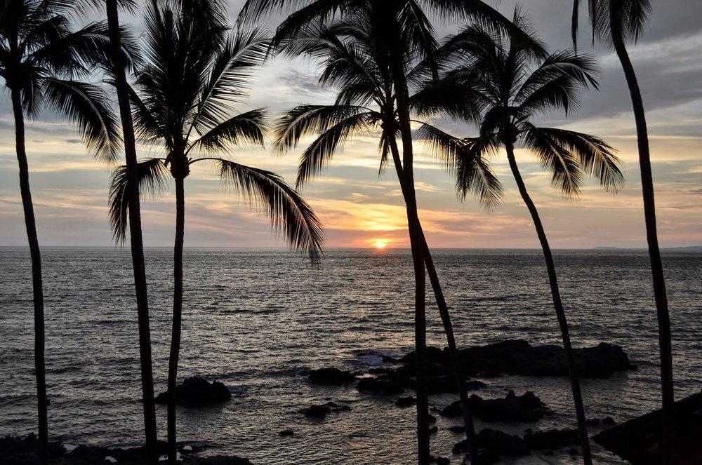 Meri ja palmut sopivat ihan hyvin jouluun, kunhan muutaman vuoden ensin opettelee.