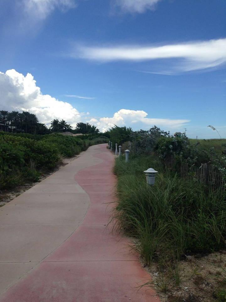 Walking Path along Beach.jpg