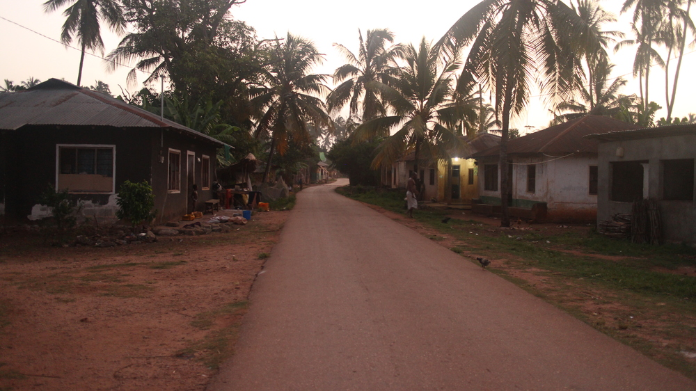 This is how the village looks at 6 AM. You will probably use this street a lot while in Kizimkazi.