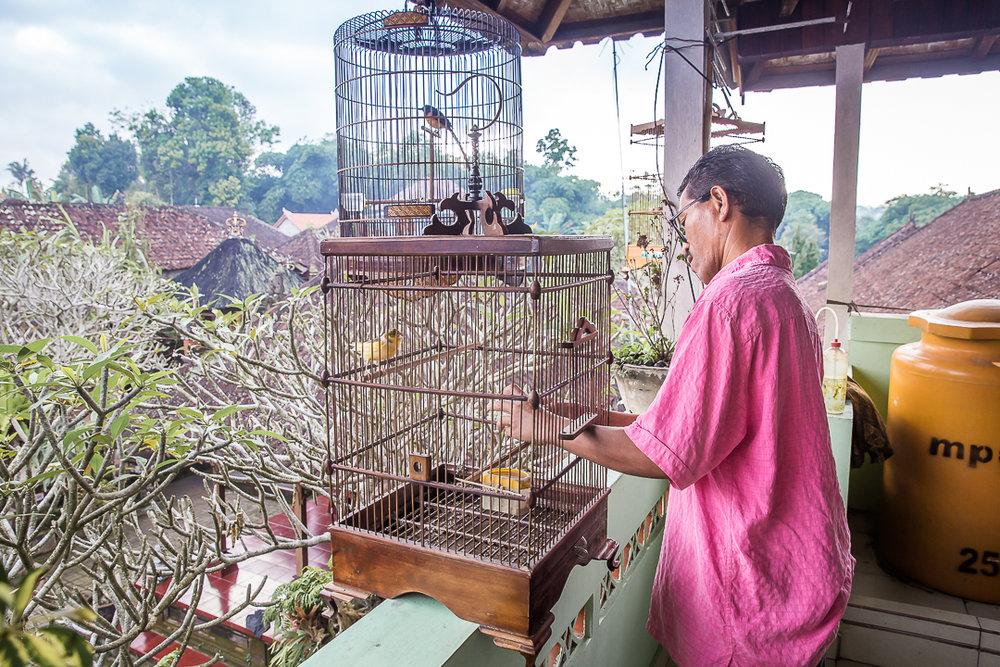 IMG_2593_Bali.jpg