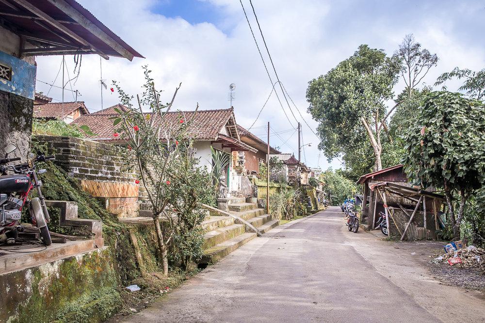 IMG_2652_Bali.jpg