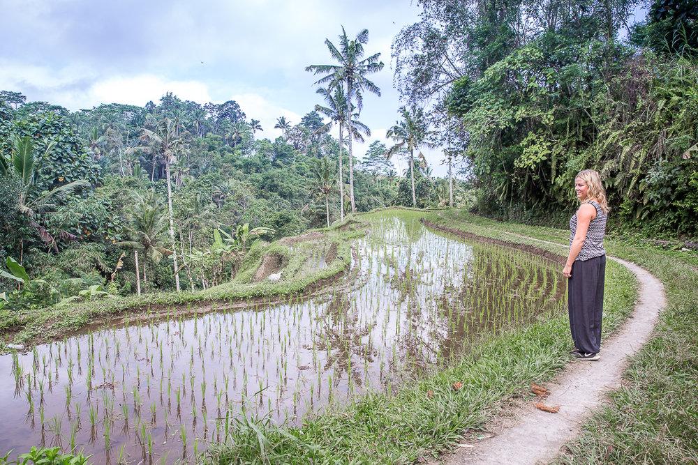 IMG_2639_Bali.jpg
