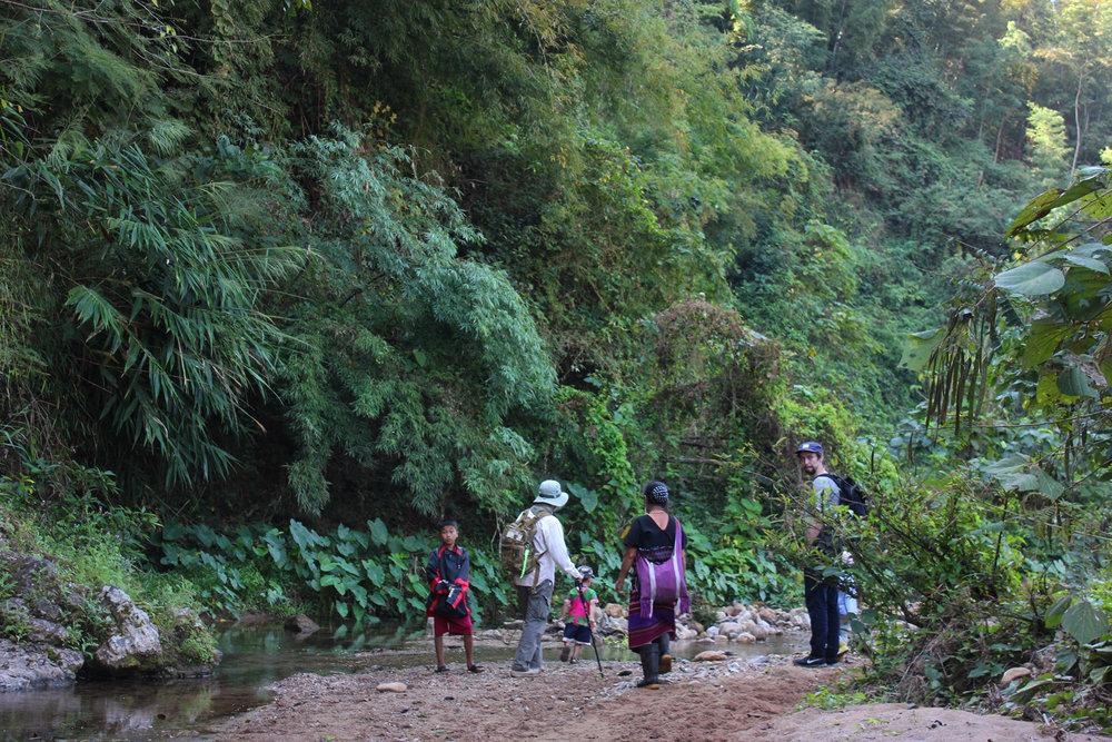trekking chiang mai.jpg
