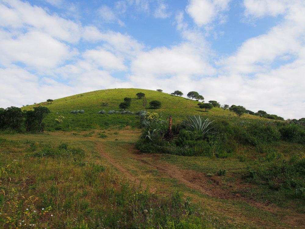 Raija's photos from Likamba