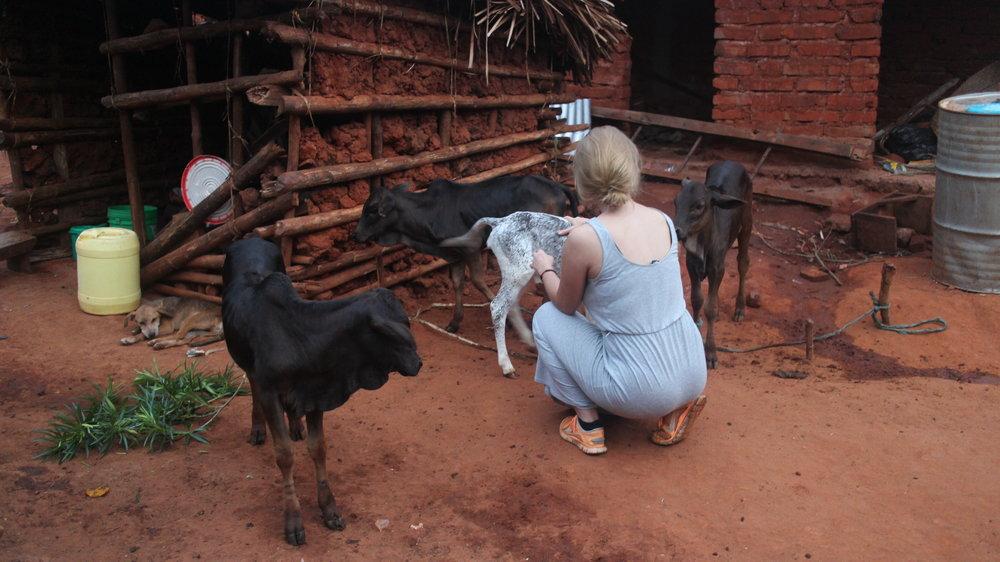 Tanzania Solo female traveller